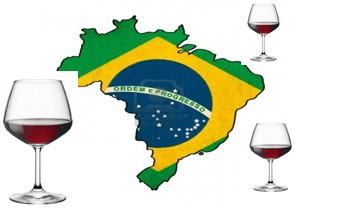 Estudio de mercado digital del vino en Brasil