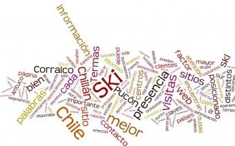 Reporte de estrategia Digital - Centros de Ski- Zona Sur de Chile (2010)