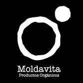 logo moldavita